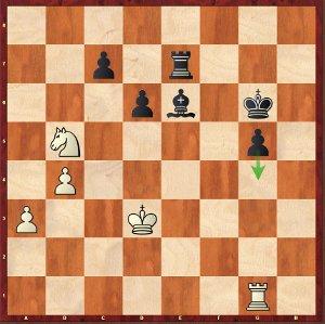 Komodo-Mvl, Odds 3. Komodo always withstands the pressure!