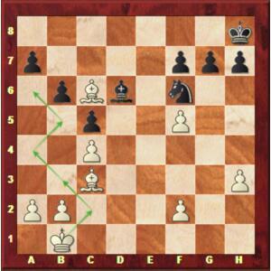 Mvl-Wei Yi, Rapide ronde 4.